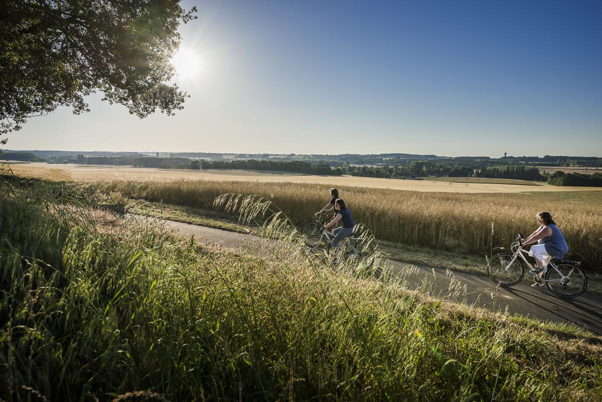Pistes cyclables et circuit vélo en Touraine