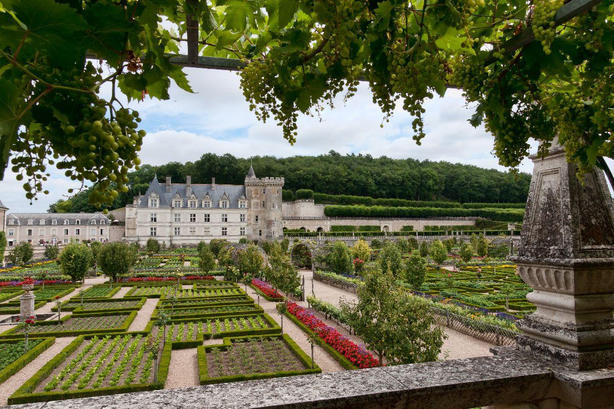 Château de Villandry et ses jardins